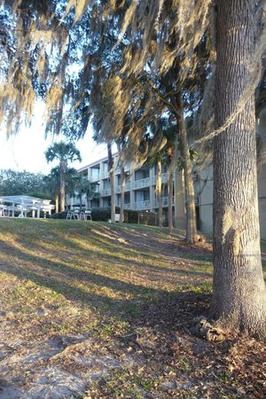 Wyndham Garden Gainesville:                                                                                           facing