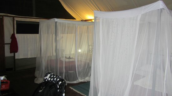 Maramboi Tented Camp:                                     Mosquito nets on beds