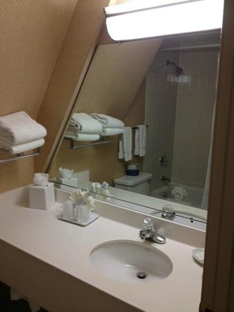 Tan-Tar-A Resort, Golf Club, Marina & Indoor Waterpark: bathroom