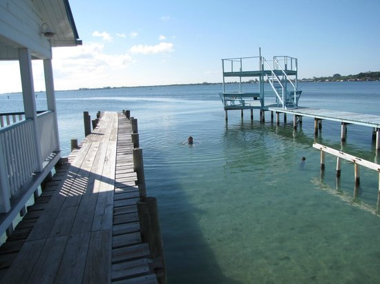 Lazy Daze on the Bay: Swimming off the Dock
