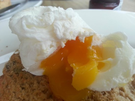 Victory at Mersea:                                     Poached egg on toast...mmm