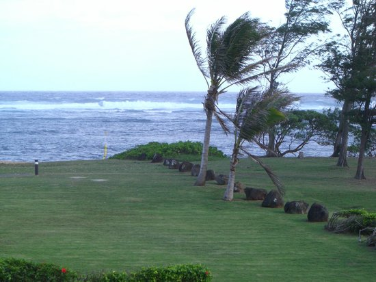 Courtyard Kaua'i at Coconut Beach :                   View from room
