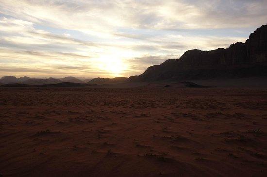 Desert Moon Camp - Day Tours:                                     Sunset