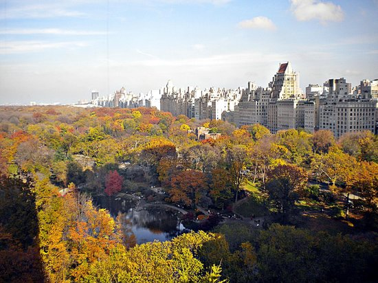 Park Lane Hotel: Amazing view!