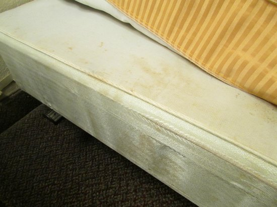 Quality Suites:                   More mattress stains