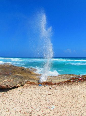 Allegro Cozumel: Blow hole