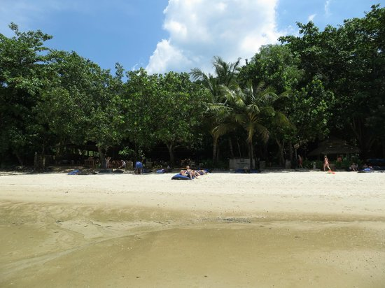 The Tubkaak Krabi Boutique Resort:                   Looking in from the ocean at low tide. Super!