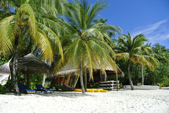 Mirihi Island Resort:                   Kanus zum ausleihen