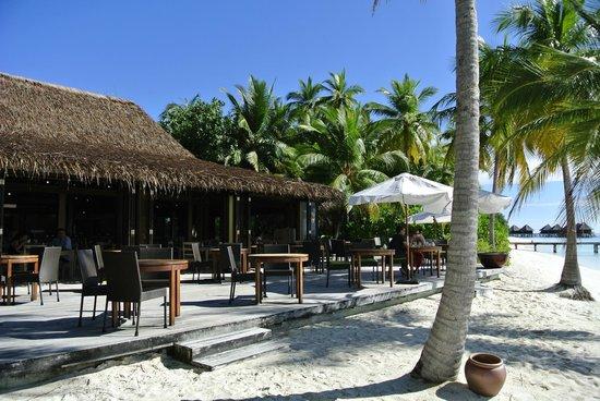Mirihi Island Resort:                   Dhoveli
