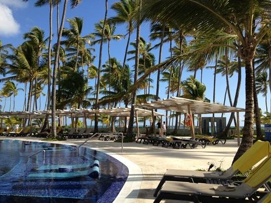 Barcelo Bavaro Beach - Adults Only:                                     poolside