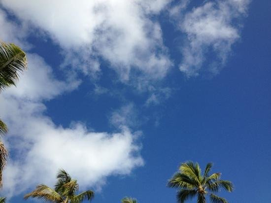 Barcelo Bavaro Beach - Adults Only:                                     beautiful sky