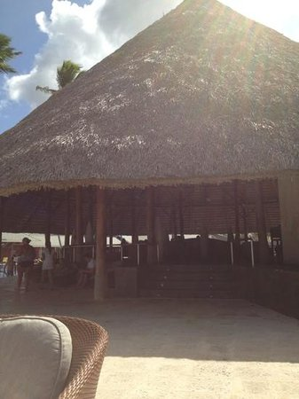 "Barcelo Bavaro Beach - Adults Only:                                     our favorite ""bohio chill out"" bar by the pool."