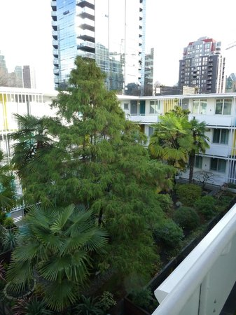 The Burrard:                   The tropical courtyard - I wasn't expecting palms. :-)