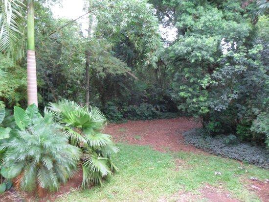 Orquideas Hotel & Cabanas:                   Esta era nuestra vista desde la habitación