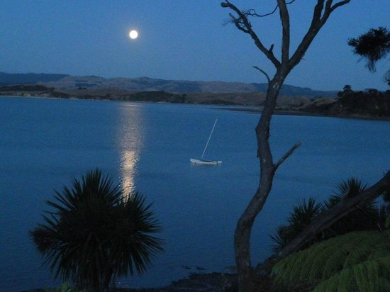 Waters Edge Holiday Accommodation:                   Moonlight Bay ...It really is !