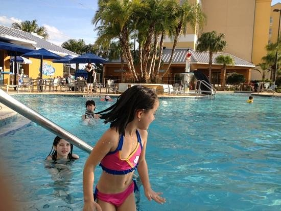 SpringHill Suites Orlando at SeaWorld®:                                     pool