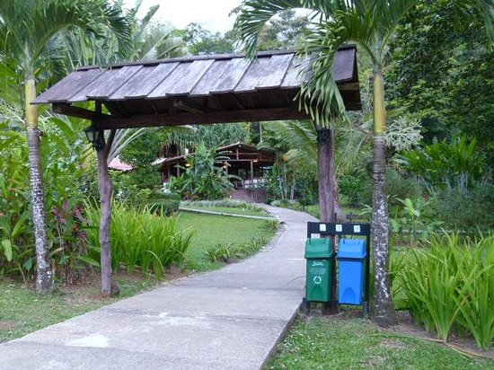 Chachagua Rainforest Eco Lodge: Entrance to the Hotel
