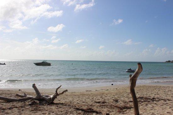 솔 카리브 산 안드레스 사진