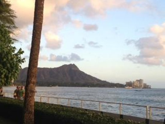 Diamond Head from Orchids