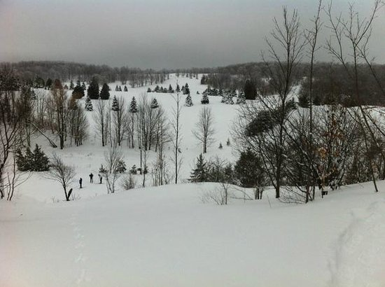 Highlands Nordic:                   View from  up high