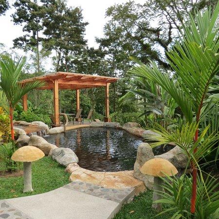 Hotel El Silencio del Campo : Hot springs