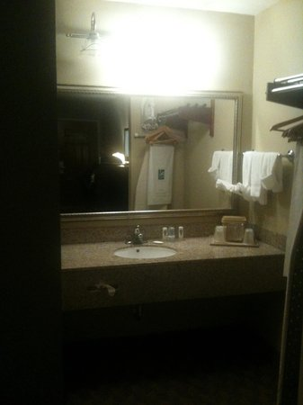 Quality Inn & Suites : Sink area