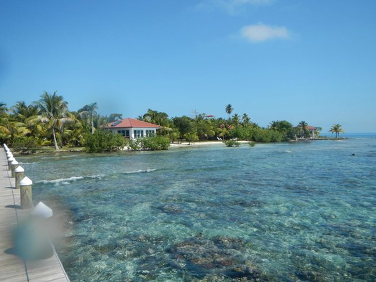 Hatchet Caye Resort:                   That water is crystal clear, I wish I was there now