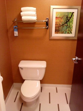 Fairfield Inn & Suites Dallas Las Colinas: new bathroom