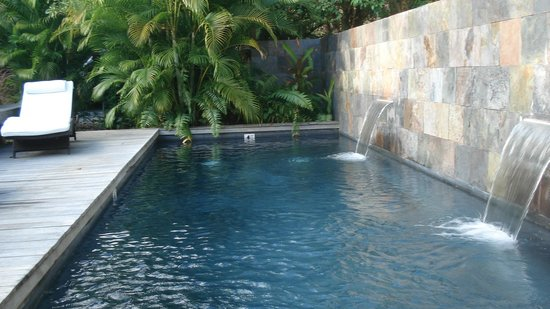 Malecon House:                   plunge pool