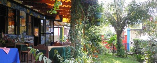 Casa 76 : Nuestra terraza y jardin