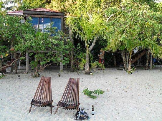 Harry's Cozy Cabanas:                   our room