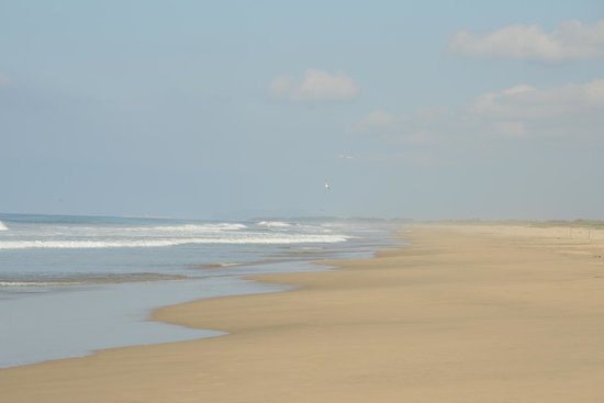 Playa Viva: Pristine beach