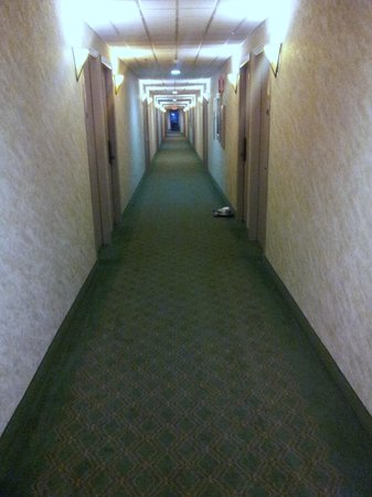 Coast International Inn:                   Hallway