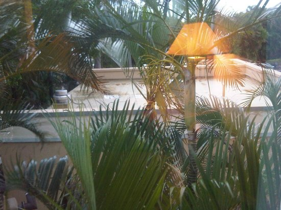 Holiday Inn Ft. Lauderdale Airport:                   reading lamp relected in window glass