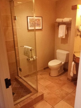Sheraton Grand at Wild Horse Pass: Bathroom