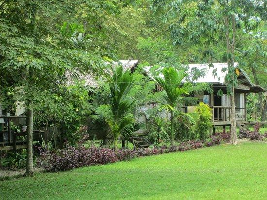 Bibiko Farm & Guesthouses