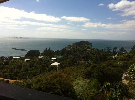 إنكلوجر باي:                   View from the terrace                 