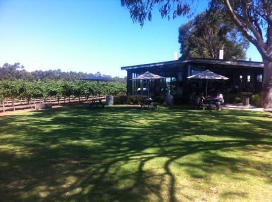 Knee Deep Winery Restaurant: front of restaurant