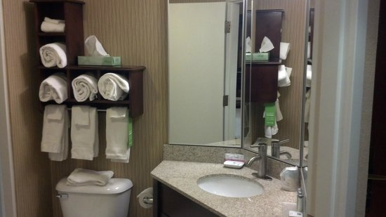 Hampton Inn Selinsgrove / Shamokin Dam:                   View into bathroom