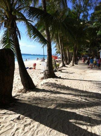 Tonglen Beach Resort:                   Beach
