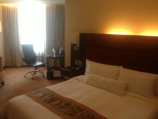 Rembrandt Hotel Bangkok:                   Room