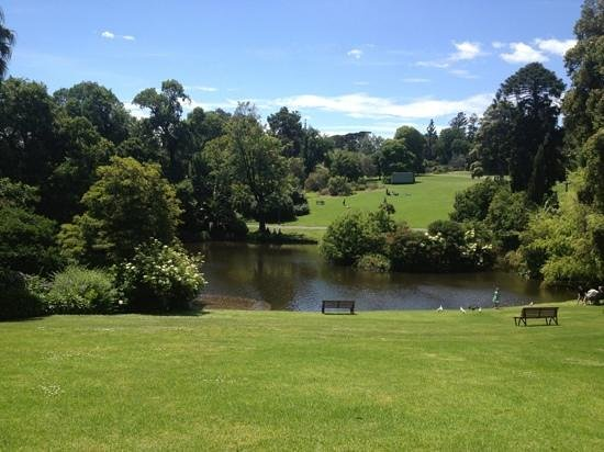 Royal Botanic Gardens Melbourne :                   Botanic Gardens - the lake