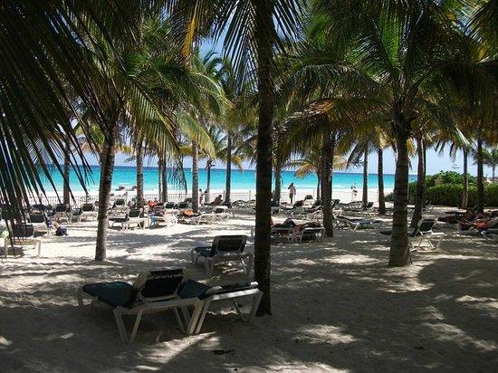 Hotel Riu Lupita:                                     plage privée de l hotel