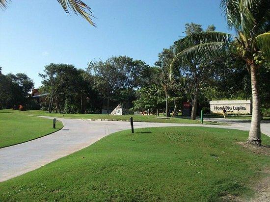Hotel Riu Lupita:                                     allée du golf devant l hotel