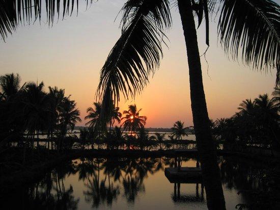 Shravanam Greens :                   Aussicht von meinem Hotelzimmer