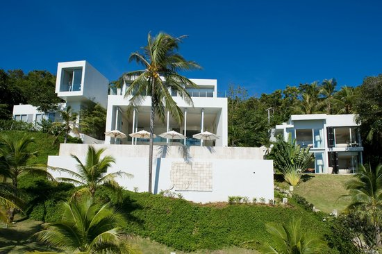 Villa Beige : Garden and view to the pool deck