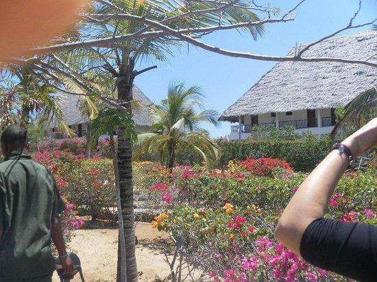 Eden Village Watamu Beach:                   entrata villaggio