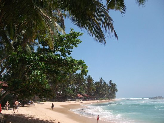 Tartaruga Hotel & Beach Restaurant:                   BEACH