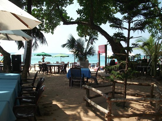 Tartaruga Hotel & Beach Restaurant:                   VIEW OUTSIDE ROOM