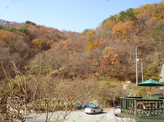 Gyeongju JY Pension: View of the hill side.